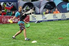 Dogfrisbee竞争在华沙,波兰 免版税图库摄影
