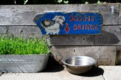 Doggie Drinks sign with arrow. Doggie drinks sign pointing to metal water bowl with rough reclaimed wood background royalty free stock photography