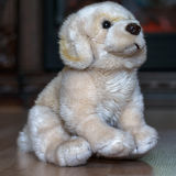 Doggie from plush. The doggie from plush sits on a wooden floor stock photos