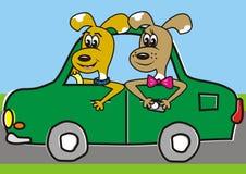 Doggs dans la voiture illustration stock