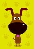 doggy Стоковые Изображения RF