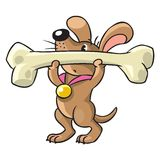 Doggy-athlete lifts the bar Royalty Free Stock Image