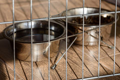 Doggy bowls with food and water behind canine cage bar Stock Images