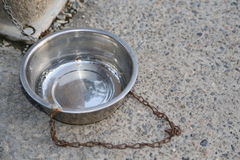 Doggy dishes sold for pets Stock Photo