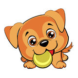 Doggy plays. With a ball vector illustration
