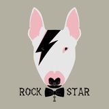Doggy rockstar Royalty Free Stock Photo