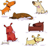 Doggy set stock illustration