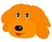 Doggy soft toy Stock Photo