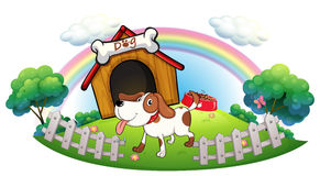 A doghouse inside the fence with a puppy Stock Images