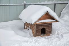 Doghouse winter among the snowdrifts. Cold Freeze Royalty Free Stock Photos