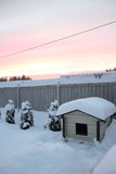 Doghouse and winter sunset. Royalty Free Stock Photography