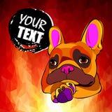 Dogo francés Ejemplo del vector para una tarjeta o un cartel Impresión en la ropa Perrito lindo Perro pedigrí Imagenes de archivo
