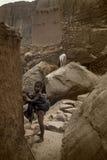 Dogon village, Dogon land, Tireli, Mali, Africa. Tireli, Mali, Africa - January 30, 1992: Dogon village and typical mud buildings Stock Photography