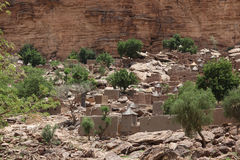 Dogon Village of Tireli Mali. Dogon people living near the cliff Stock Image