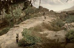 Dogon wioska, Dogon ziemia, Tireli, Mali, Afryka Obrazy Royalty Free