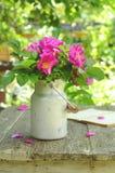 Dogrose-Blumenstrauß in der alten Milchkanne Lizenzfreie Stockfotografie