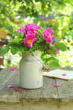 Dogrose bouquet in old milk churn Royalty Free Stock Photography