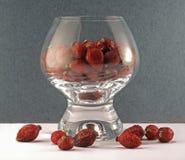 Dogrose in een glas Royalty-vrije Stock Foto