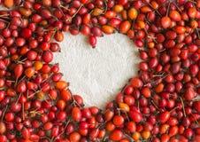 Dogrose jagody w postaci serca na bawełnianej tkaninie Obrazy Royalty Free