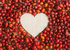 Dogrose jagody w postaci serca na bawełnianej tkaninie Zdjęcie Stock
