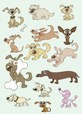 Dogs. Illustrations of funny cartoon dogs in different actions Stock Photo