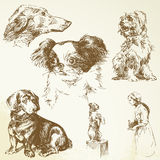Dogs. Cute dogs - hand drawn collection royalty free illustration
