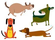 Dogs. Cute dogs set, illustration vector illustration