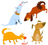Dogs. Cute dogs set,  illustration Stock Images