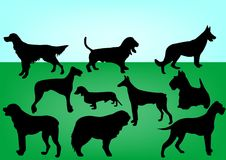 Dogs. Silhouettes of 10 dogs illustration Royalty Free Stock Photo