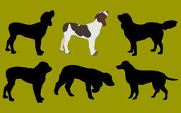Dogs. Illustrations of dogs stock illustration