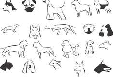 Dogs Stock Photo