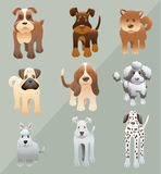 Dogs. Vector Illustration of Various Dogs vector illustration