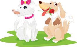 Dogs. An illustration of two dogs playing Stock Photo