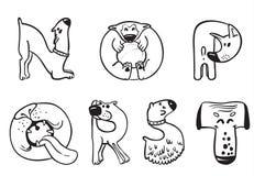 Dogs alphabet Stock Image