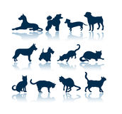 Dogs And Cats Silhouettes Stock Photos