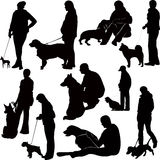 Dogs animals Stock Photos