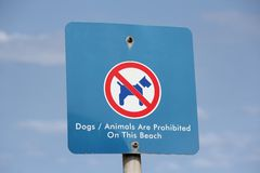 Dogs and Animals prohibited on beach sign Stock Photo