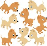 Dogs background Royalty Free Stock Photos