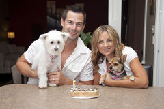 Dogs with birthday cake. Happy couple with two dogs celebrating birthday with cake and candles Royalty Free Stock Images