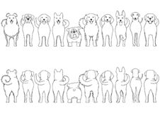 Dogs breed border set line art. From front view and rear view royalty free illustration