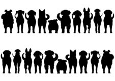 Dogs breed border silhouette set. From front view and rear view vector illustration