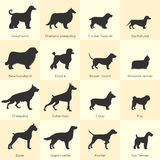 Dogs Breed Icon Set vector illustration