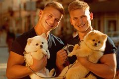 Dogs bring them joy. Muscular men with dog pets. Happy twins with muscular look. Spitz dogs love the company of their. Family. Happy family on walk. Twins men royalty free stock photos