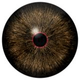 Dogs brown eyeball with isolated white background. Little red round around black pupil, 3d animal eye stock images
