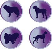 Dogs button Stock Images