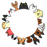 Dogs&cats cirkel med kopieringsutrymme Arkivfoto