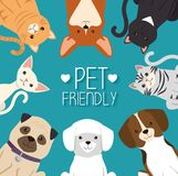 Dogs and cats pets friendly. Vector illustration design royalty free illustration