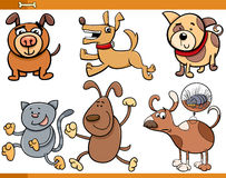 Dogs characters cartoon set Stock Images
