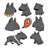 Dogs characters pitbull. Funny animals cartoon. Stock Images