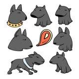 Dogs characters pitbull. Funny animals cartoon. Doodle dog. Sticker dog pitbull. Funny character dogs. Set dog  pitbull Stock Images